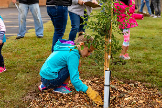 Tree Planting at MCE